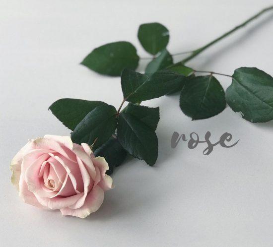 Wedding-Flowers-Guide