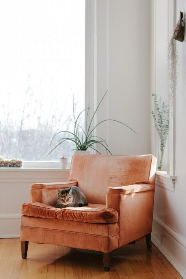 Interior Inspiration: Styling Your Home With Burnt Orange